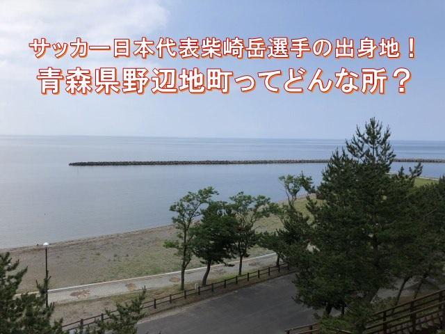 サッカー日本代表柴崎岳選手の出身地!青森県野辺地町ってどんな所?
